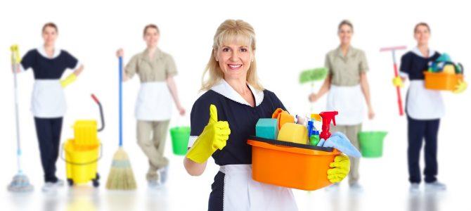 Načrt za čiščenje stanovanja: Zbogom mikrobi